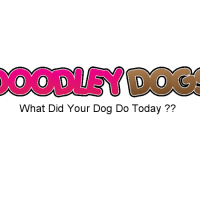 dooley dogs banner