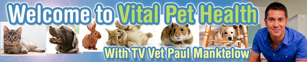 Vital Pet Health - Ask the experts